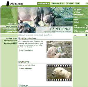 Knut Photo Gallery at the Zoo Berlin
